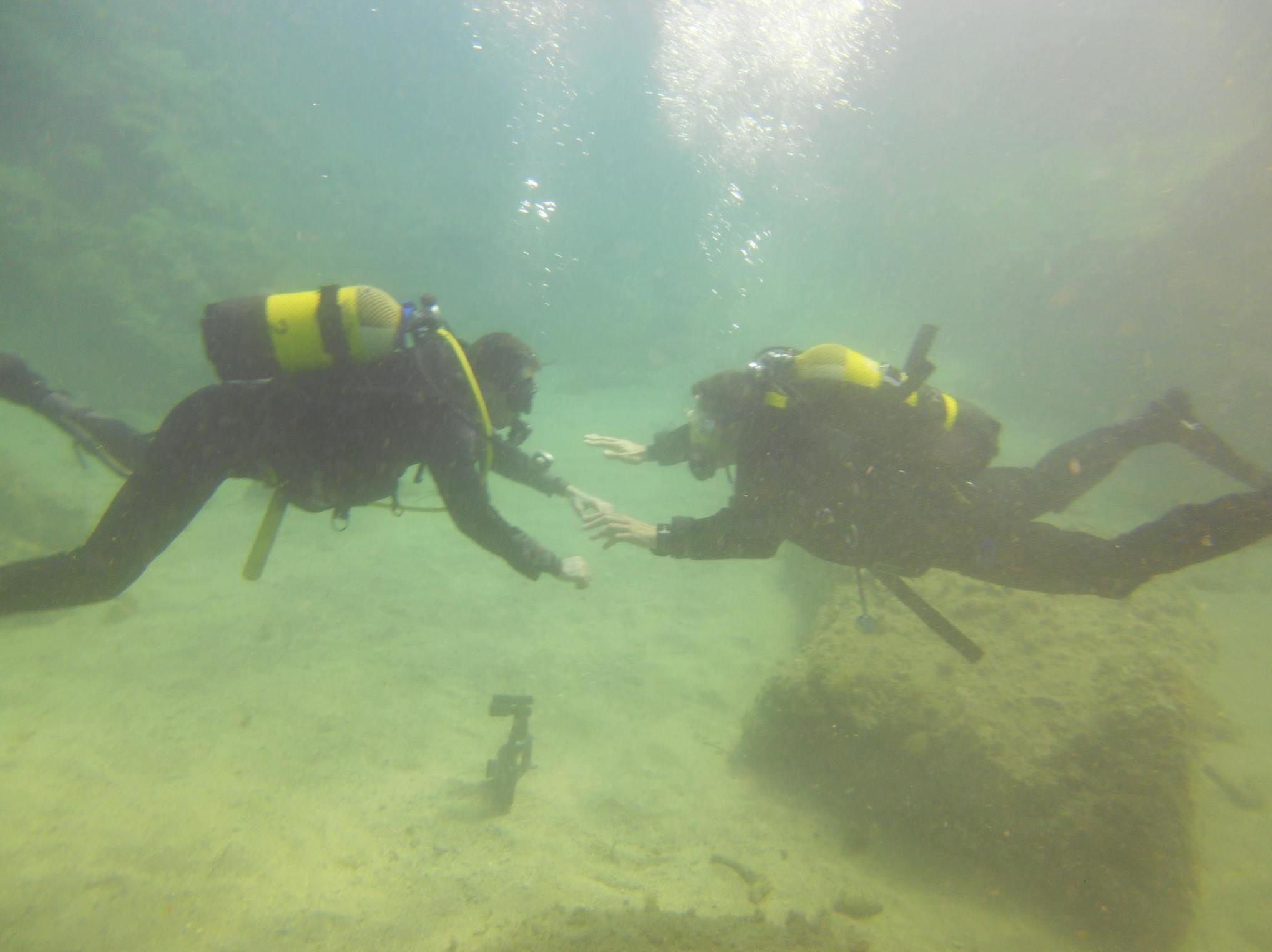 Talleres de biología marina