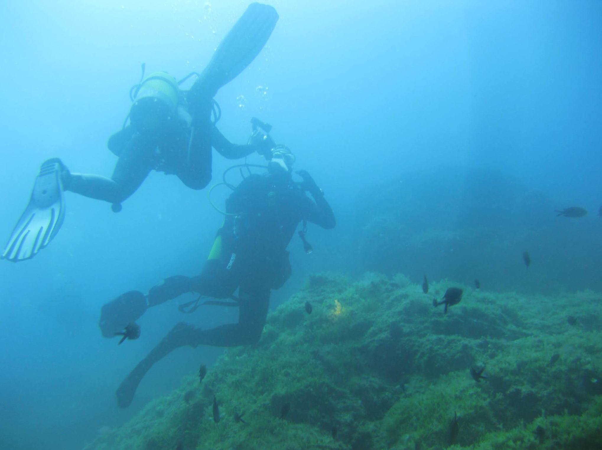 Paseo por las profundidades marinas