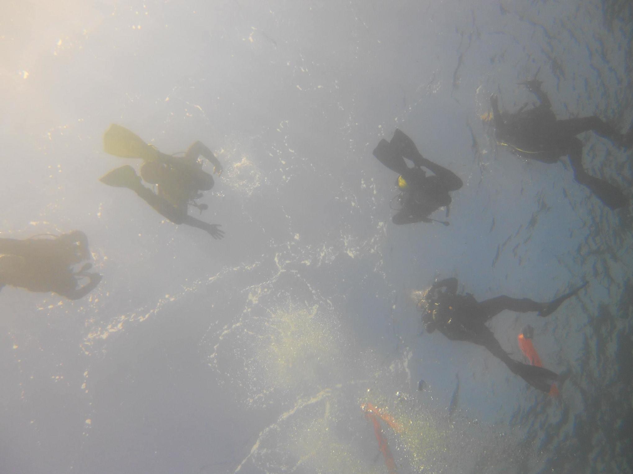 Submarinistas disfrutando del mar