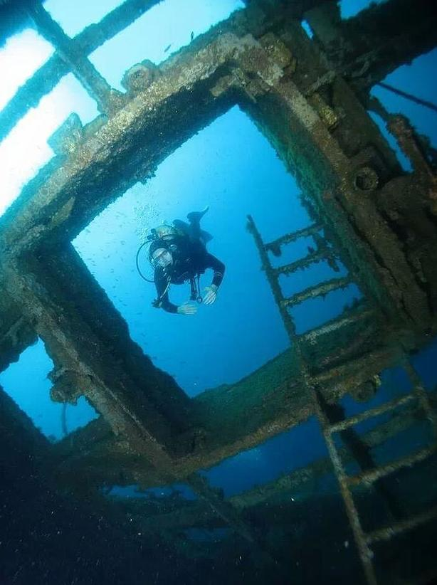 Talleres de biología submarina