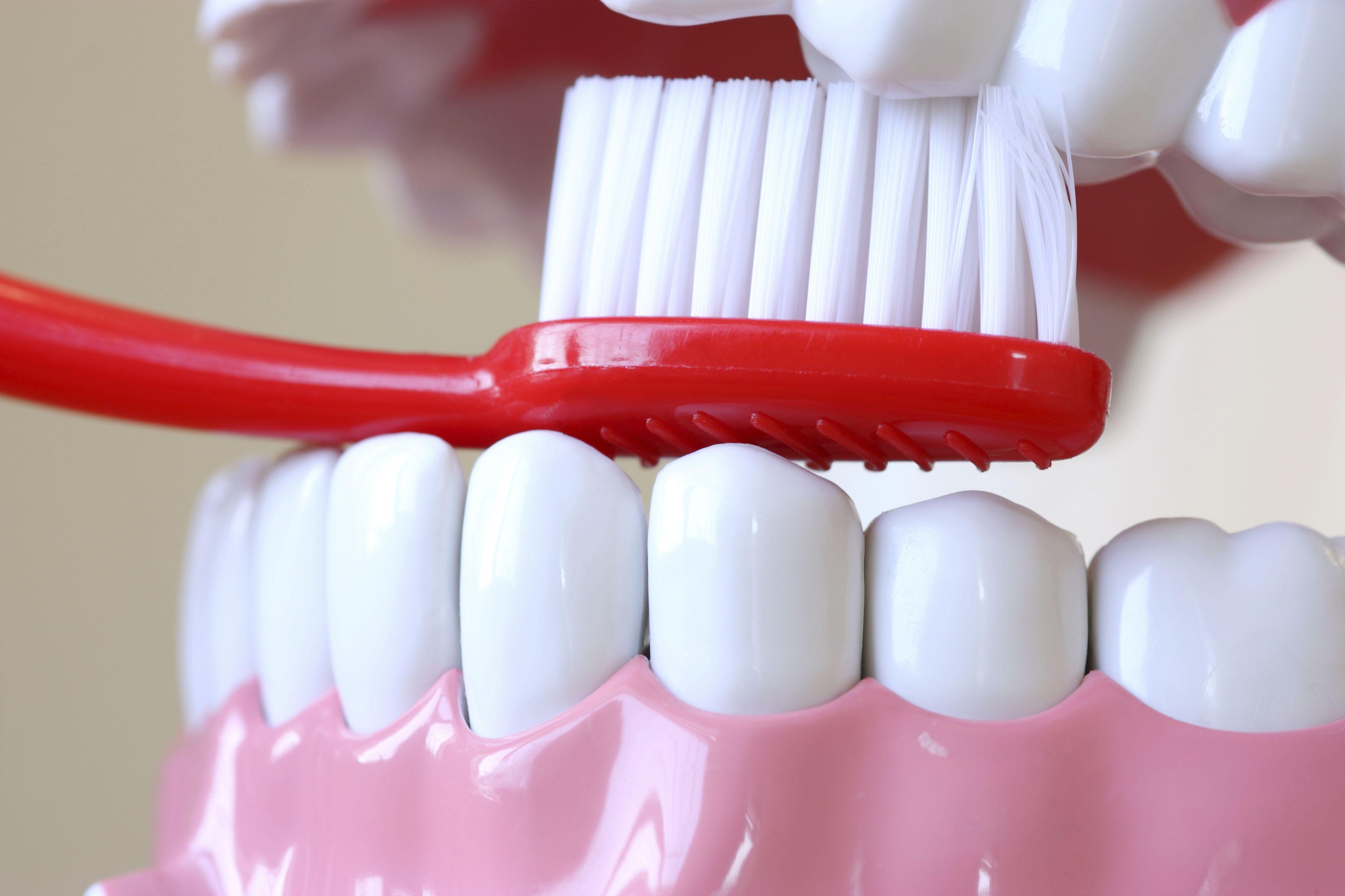 Asesoramiento sobre higiene dental en Zaragoza
