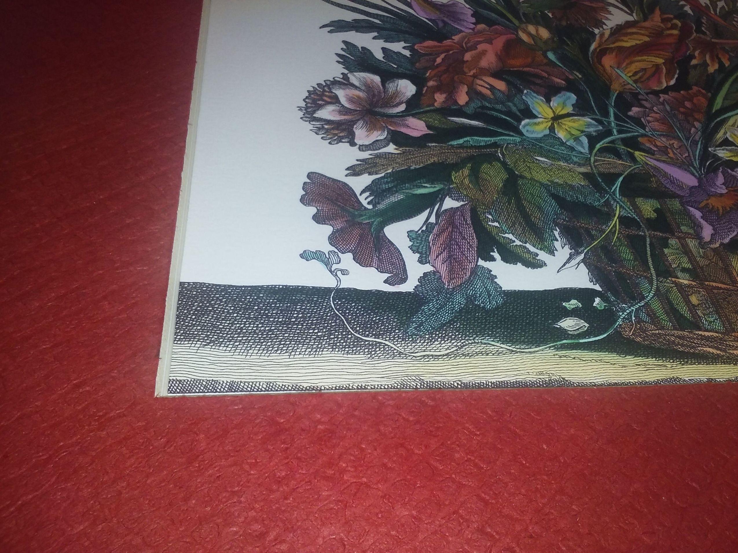 Detalle de passepastout gofrado y litografía iluminada con acuarelas
