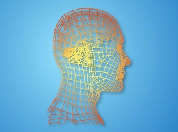 Terapia Cognitivo-Conductual : Gabinete Psicológico.Formación de Josune Fernández Gómez