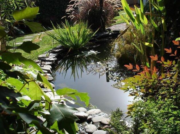 accesorios para estanques estanques y lagos productos y accesorios de piscines