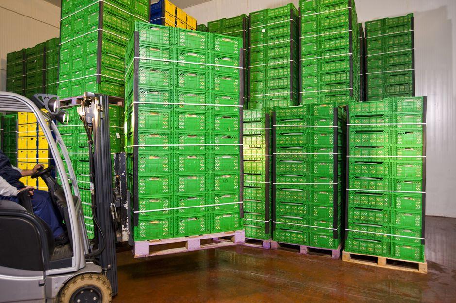 Transporte de alimentos en Alicante