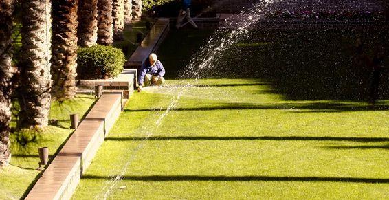 Trabajos de jardinería: Servicios de Cofoso