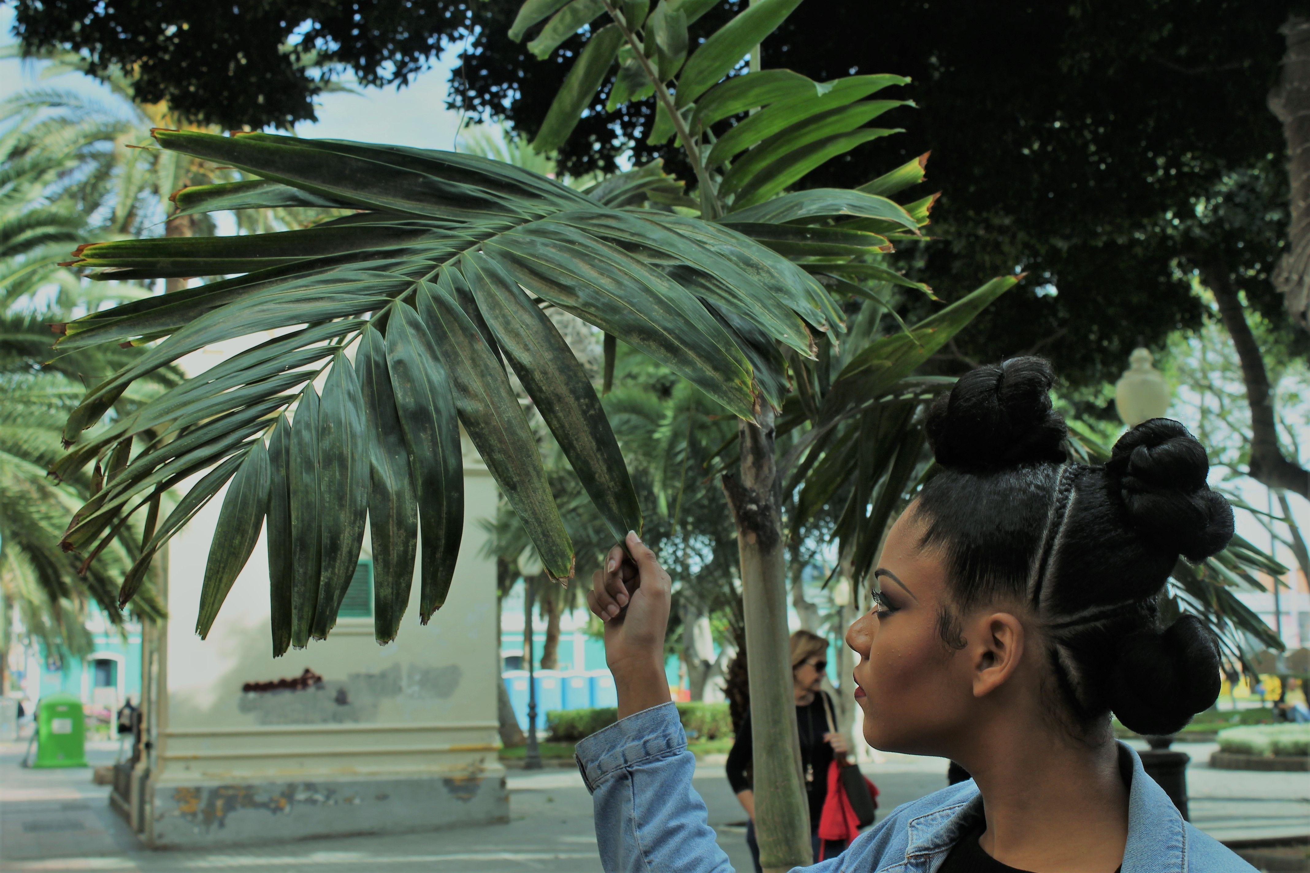 Peinados y trenzas africanas peluquería Las Palmas
