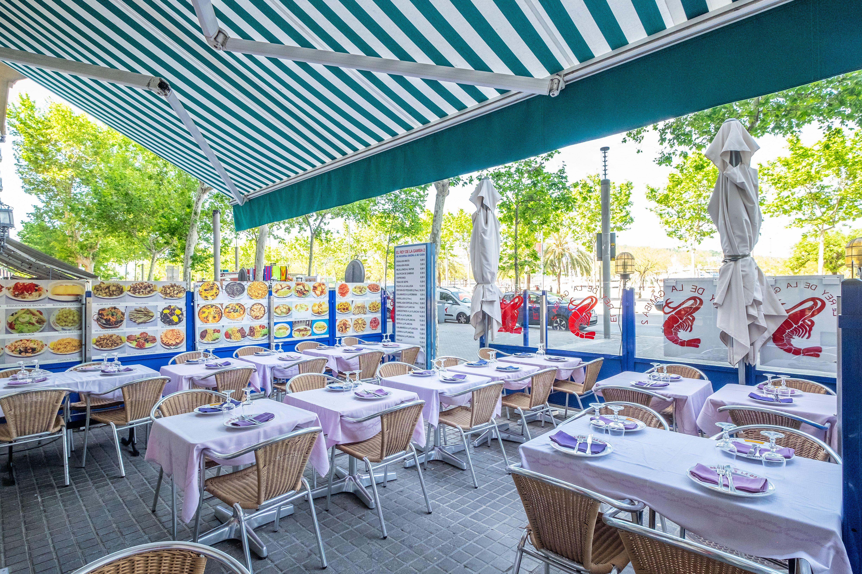 Foto 9 de Cocina marinera en Barcelona | El Rey de la Gamba 2