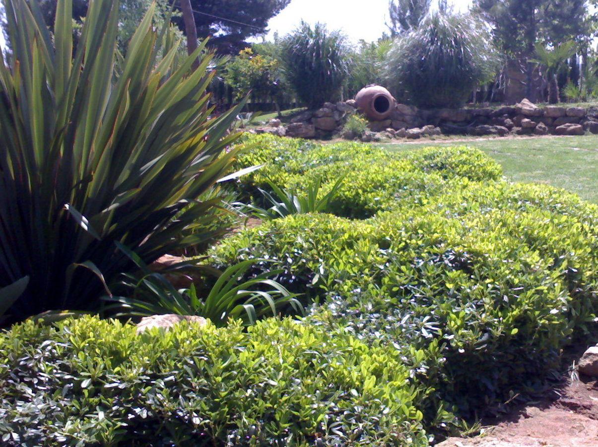Ver fotos de jardineria 50