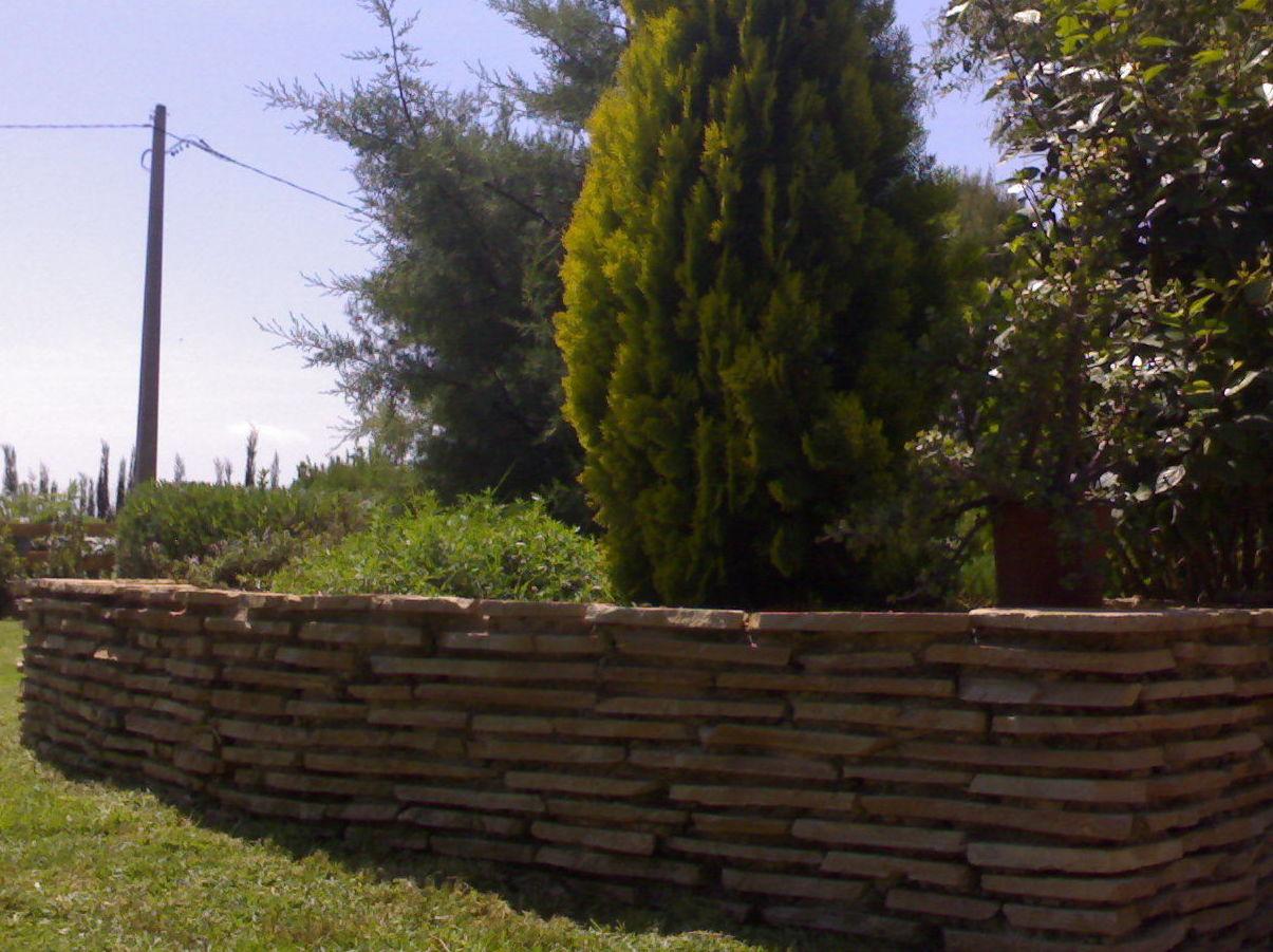 jardines setos valencia