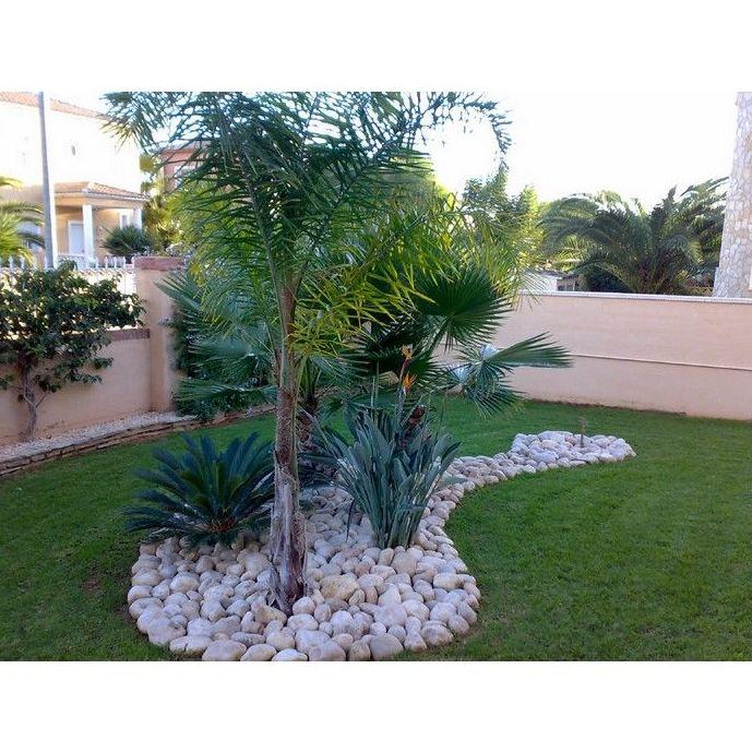 Trabajos de jardinería: Servicios  de Mimojardín