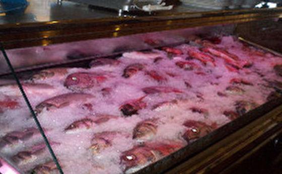 comer pescado san pedro alcantara
