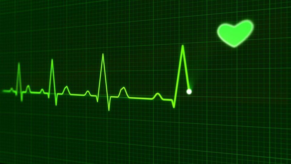 Cardiología: Servicios  de Clínica Veterinaria Hispanidad