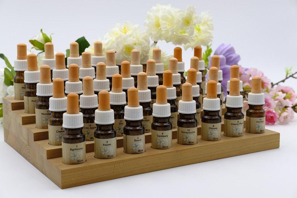 Plantas medicinales: Servicios of Herbolario Hierbabuena
