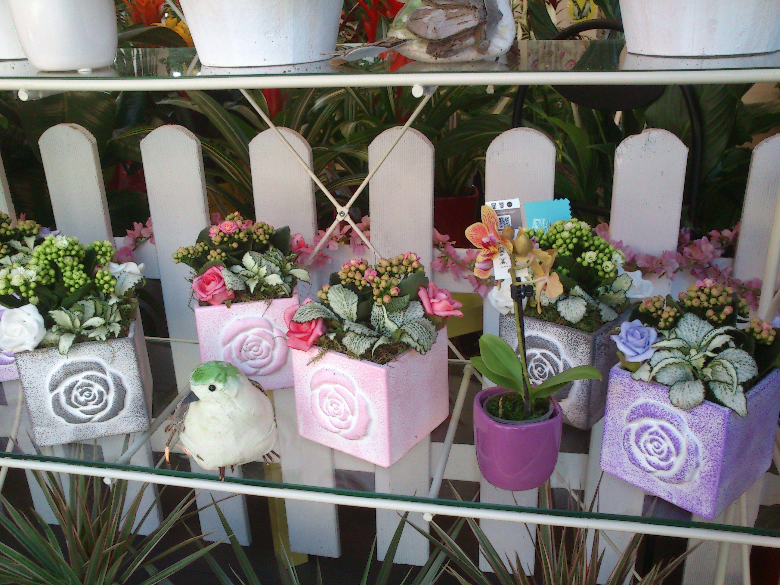 Foto 12 de Floristerías en  | Bouquet Flores y Plantas
