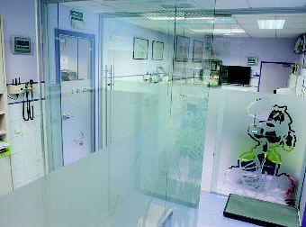 Centro Veterinario Sur