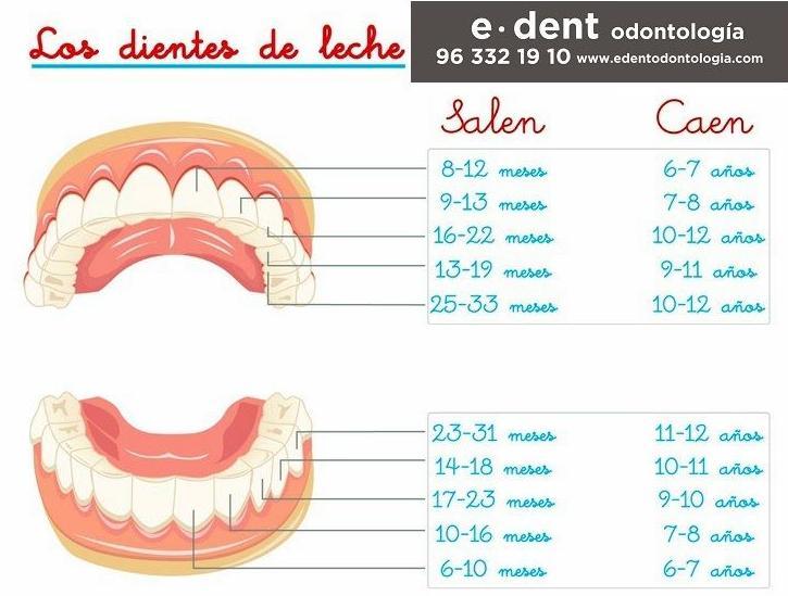 Cuidar dientes de leche evita futuras ortodoncias. Ortodoncia infantil en Valencia.