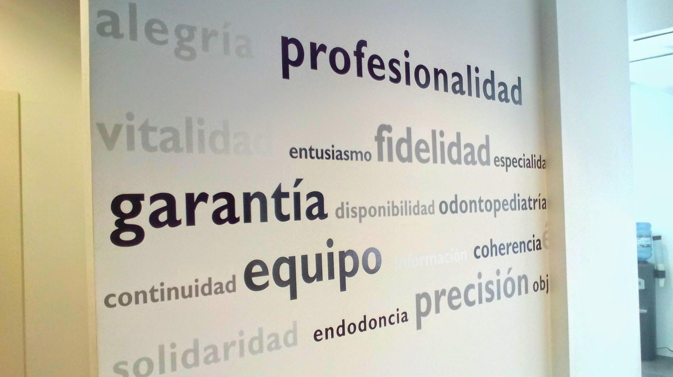 Profesionalidad, garatía, fidelidad, equipo y precisión !!!