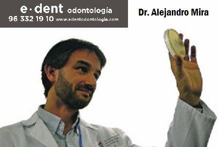 Investigadores valencianos descubren una bacteria que evita la caries