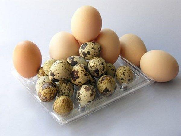 Foto 29 de Venta de pollo en  | Pollos RMC