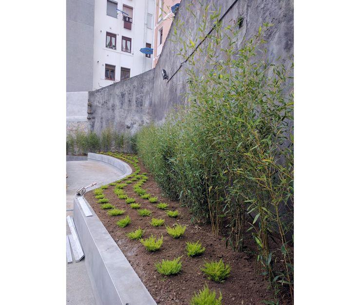 Servicios de jardinería en Bilbao