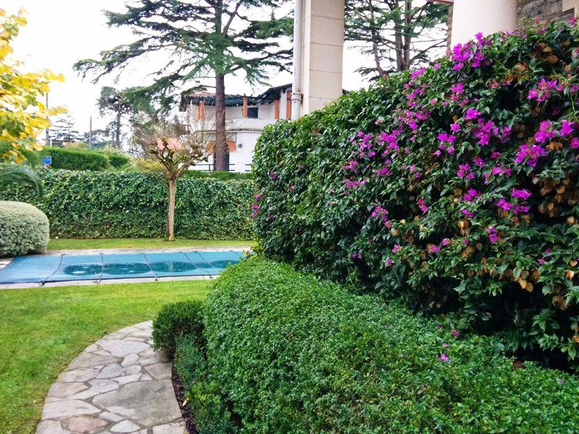 Mantenimiento de jardines en Bilbao
