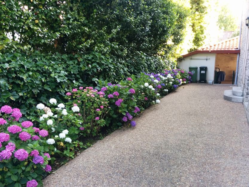 Diseño y mantenimiento de jardines en Bilbao