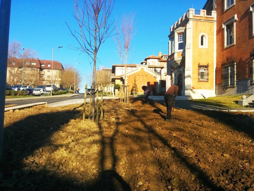 Diseño y ejecución de jardines en Bizkaia