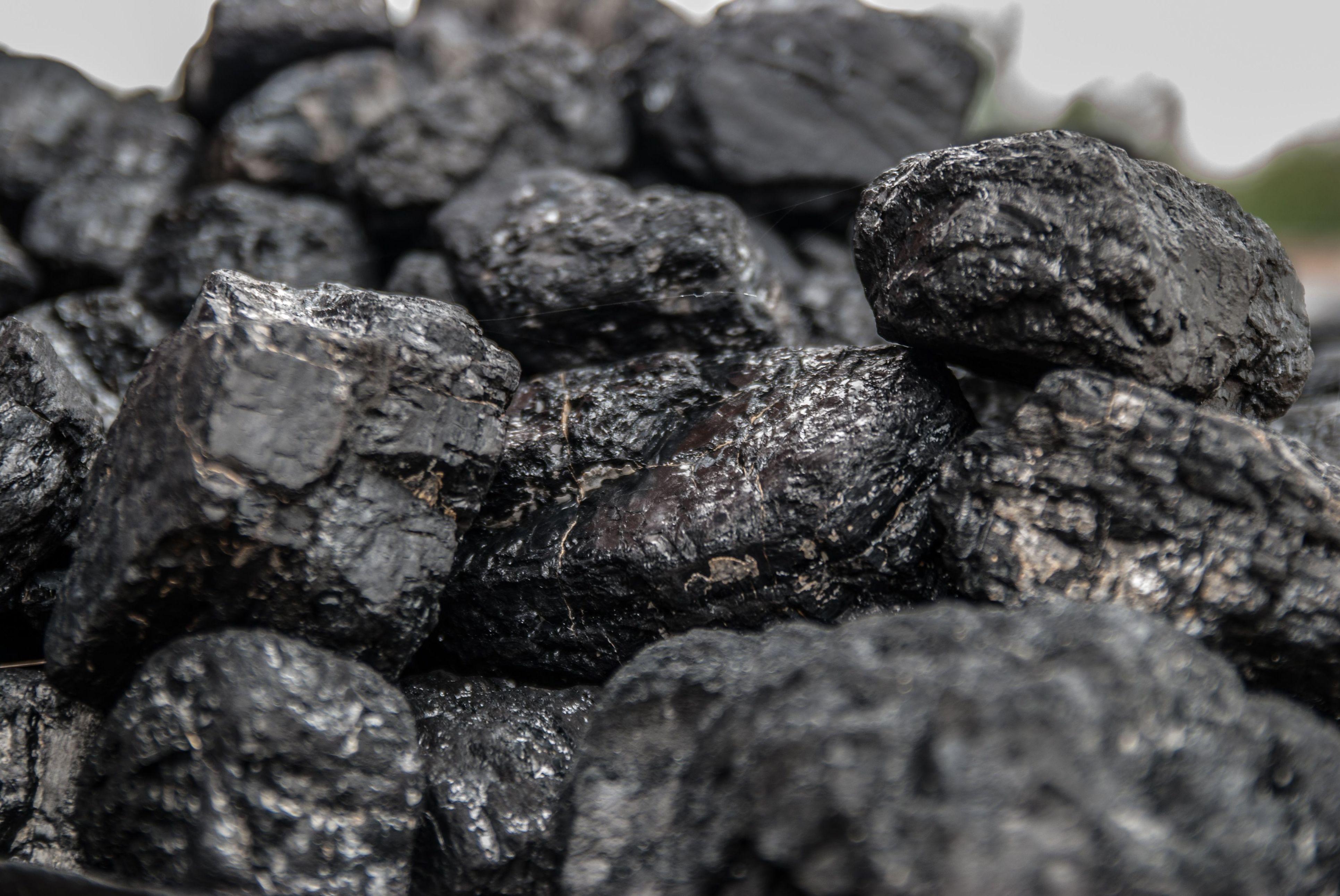 Venta de carbón vegetal