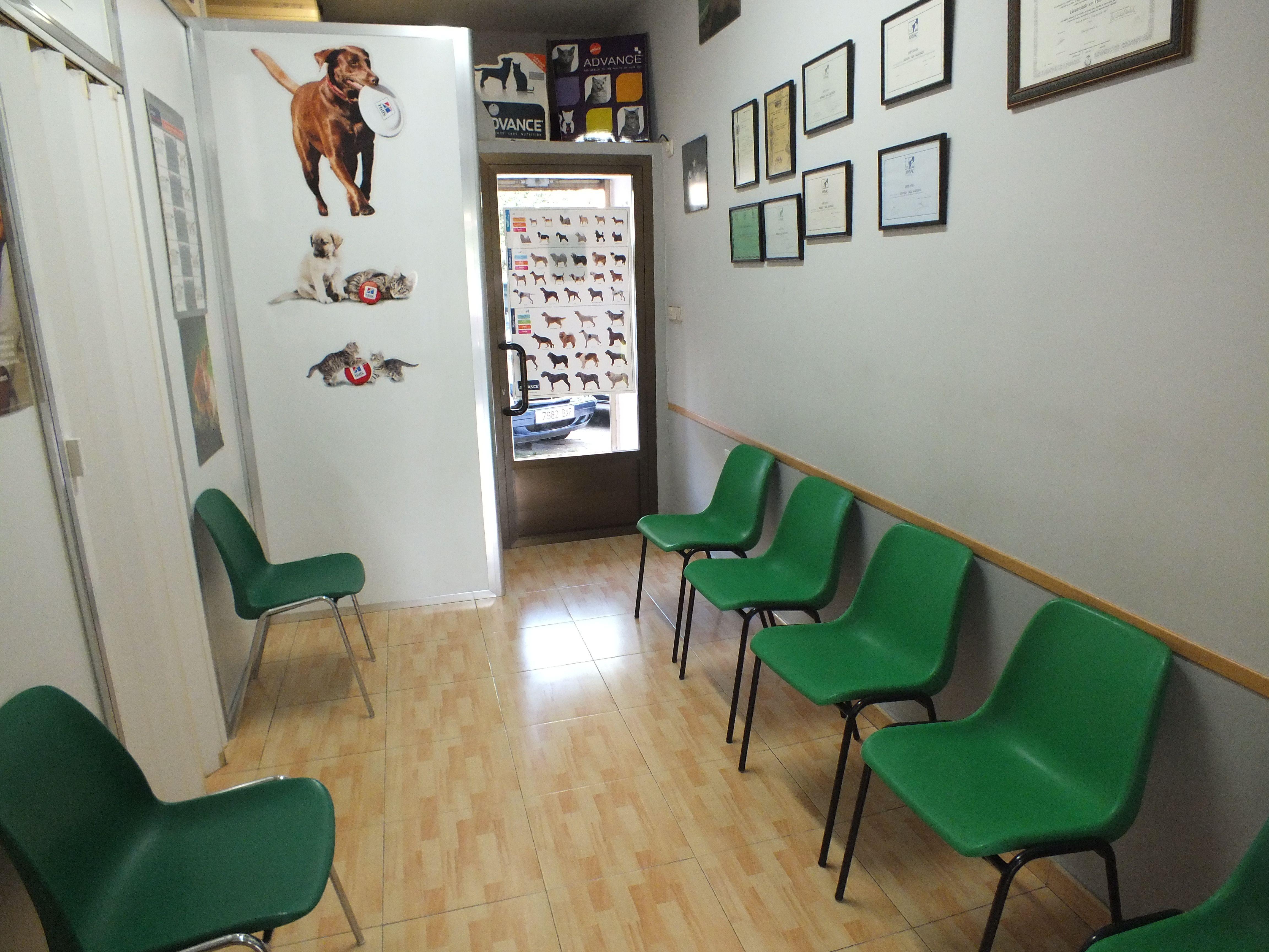 Centro veterinario Aluche