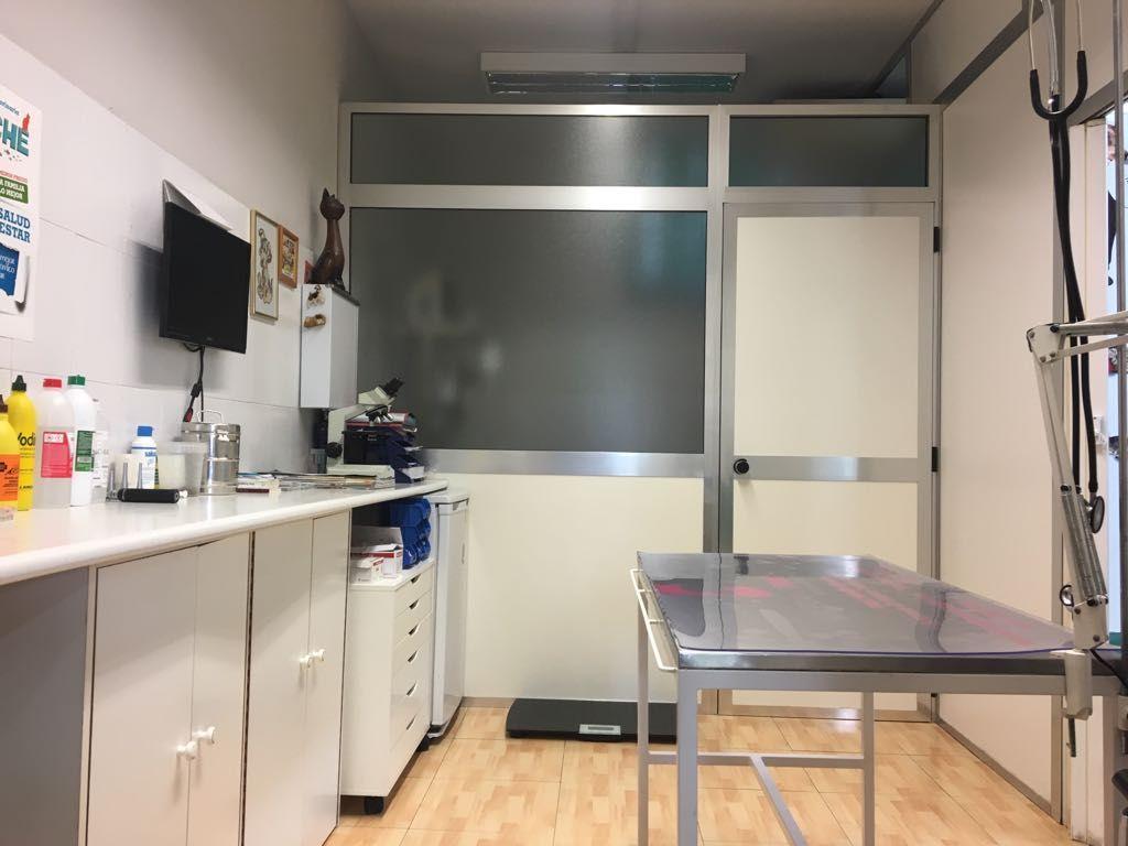 Consulta veterinaria Aluche