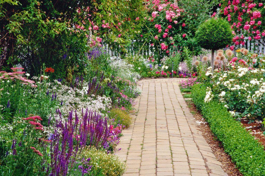 Diseño y mantenimiento de jardines en Paterna