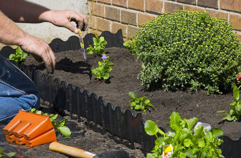 Mantenimiento de jardines en Paterna