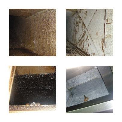 Foto 8 de Chimeneas y calderas (limpieza) en Son Servera | Limpiezas Filtro net