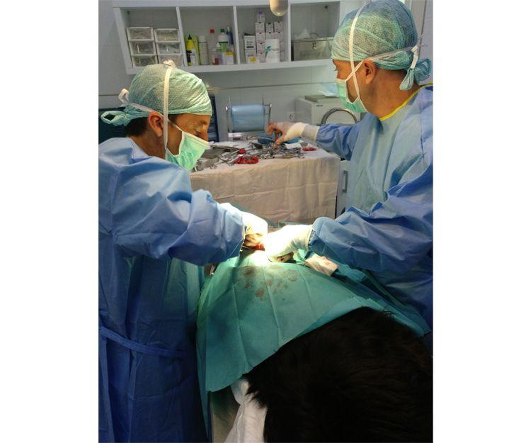 Clínica veterinaria en Llíria