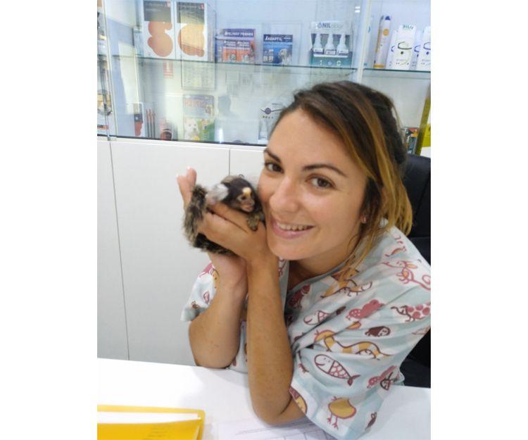 Veterinario de animales exóticos en Llíria, Valencia