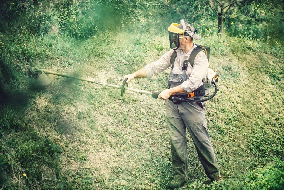 Prevención de incendios forestales en Pontevedra