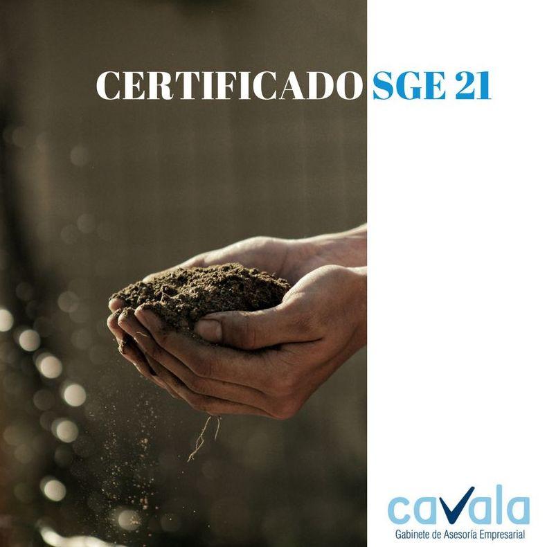CERTIFICADO SGE 21