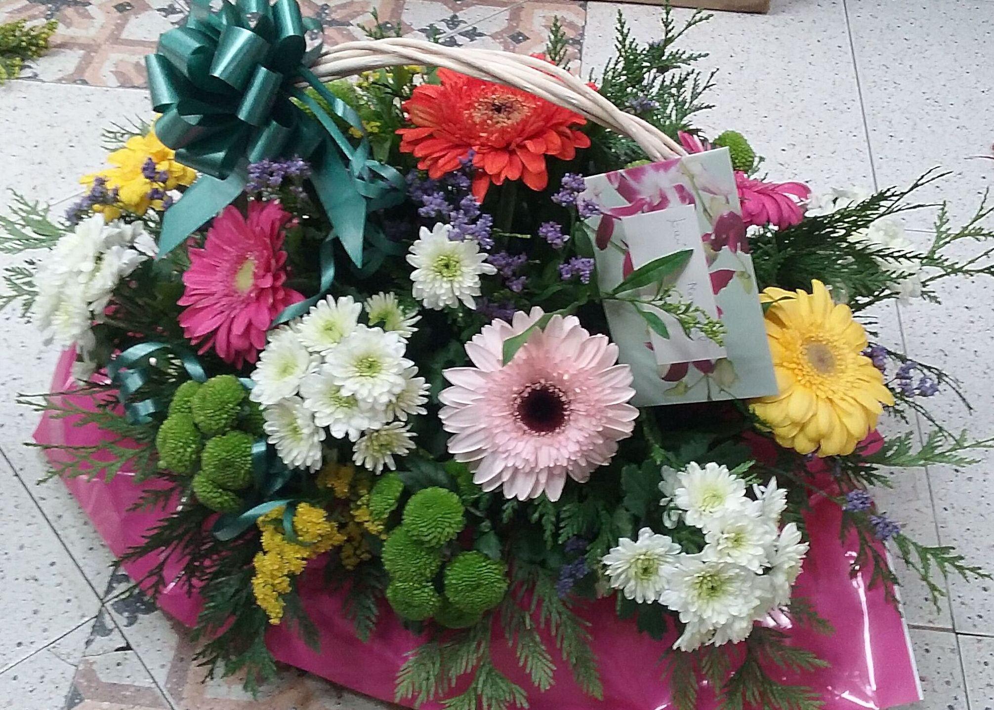 Foto 15 de Floristerías en Cabeza del Buey | Floristería, Perfumería, Pajarería Herboflor