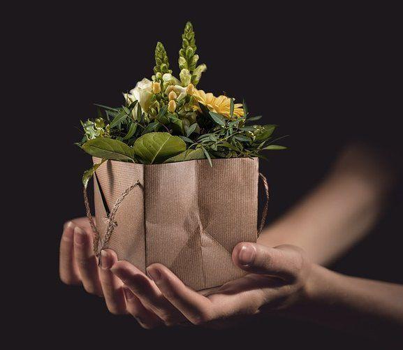 Entrega a domicilio: Servicios de Floristería, Perfumería, Pajarería Herboflor