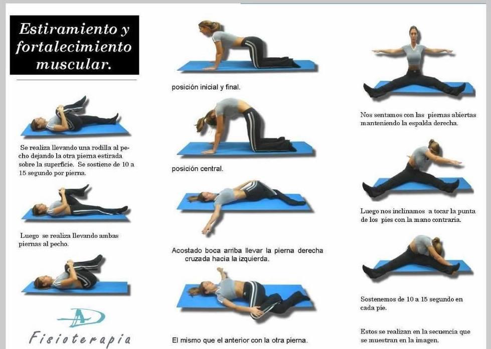 Estiramiento y fortalecimiento muscular
