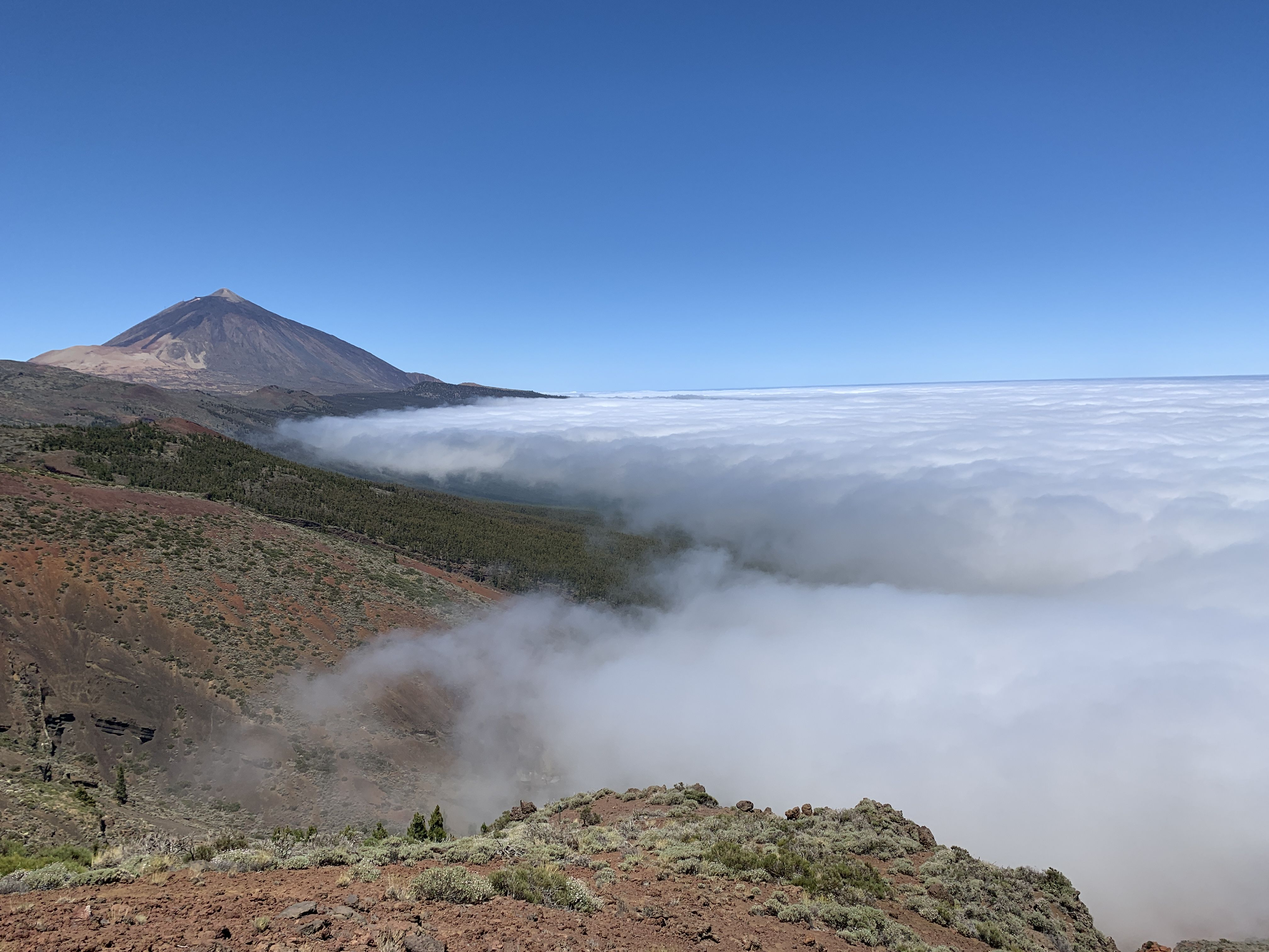 Excursions to Teide in Tenerife