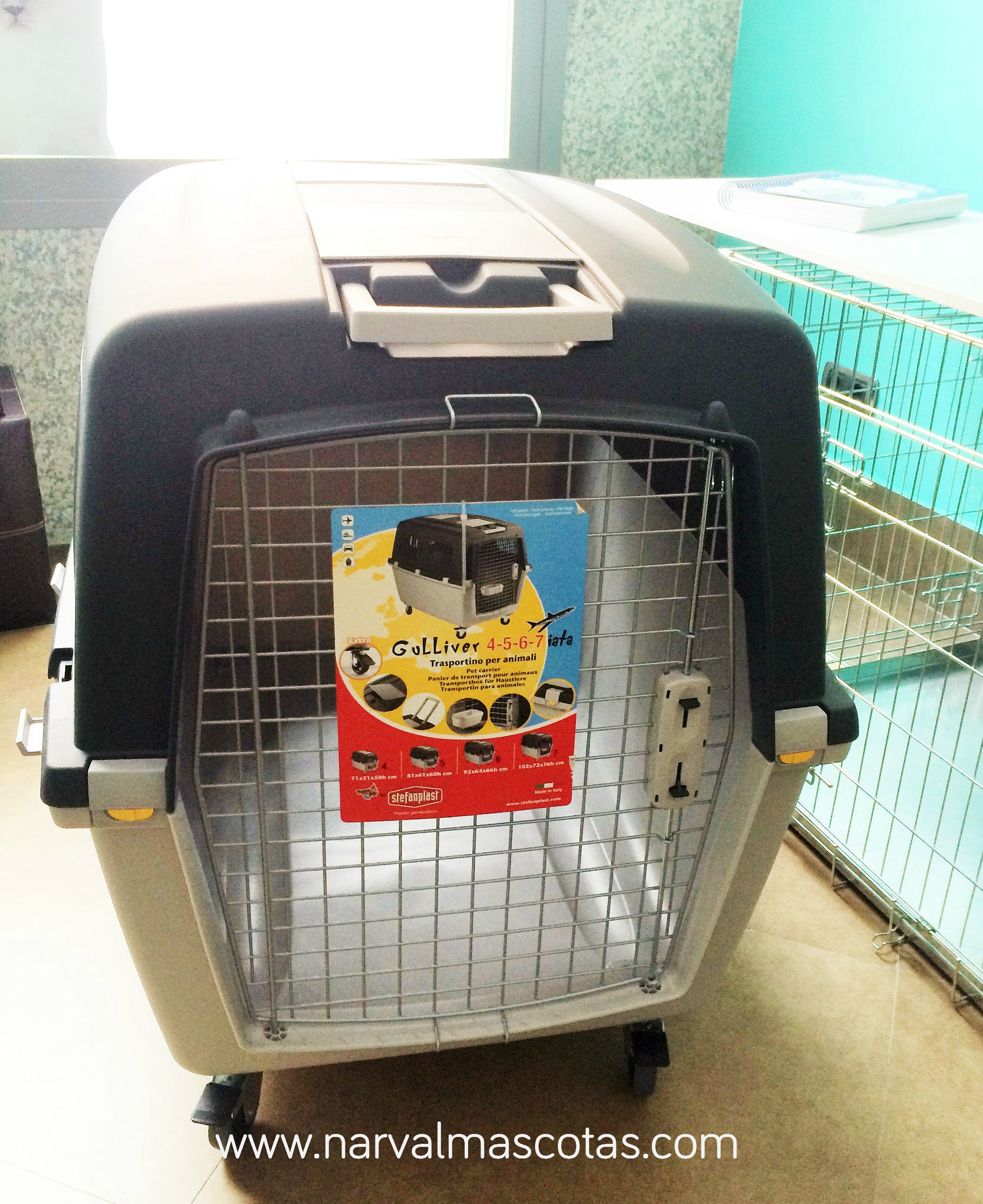 Alquiler de transportín para perros avión