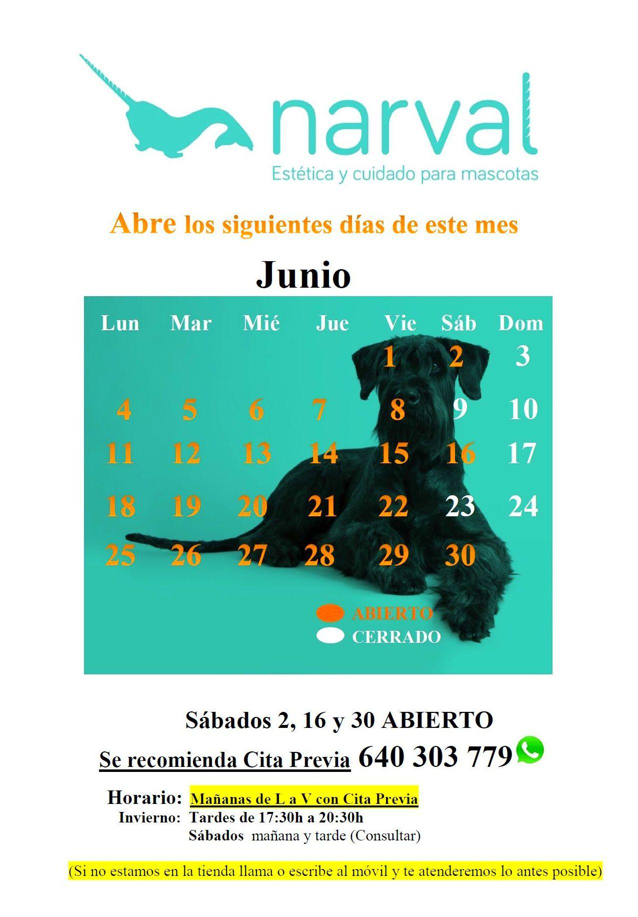 Narval Mascotas peluquería canina Leganés   JUNIO 18