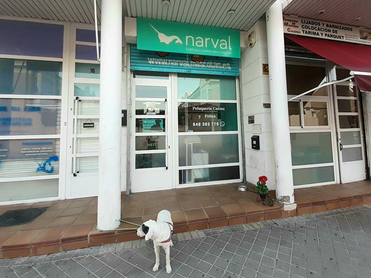 Foto 1 de Tienda de mascotas en Leganés en Leganés | Narval Mascotas