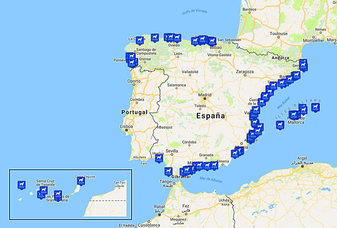 Playas para perros en España 2017-Narval Mascotas
