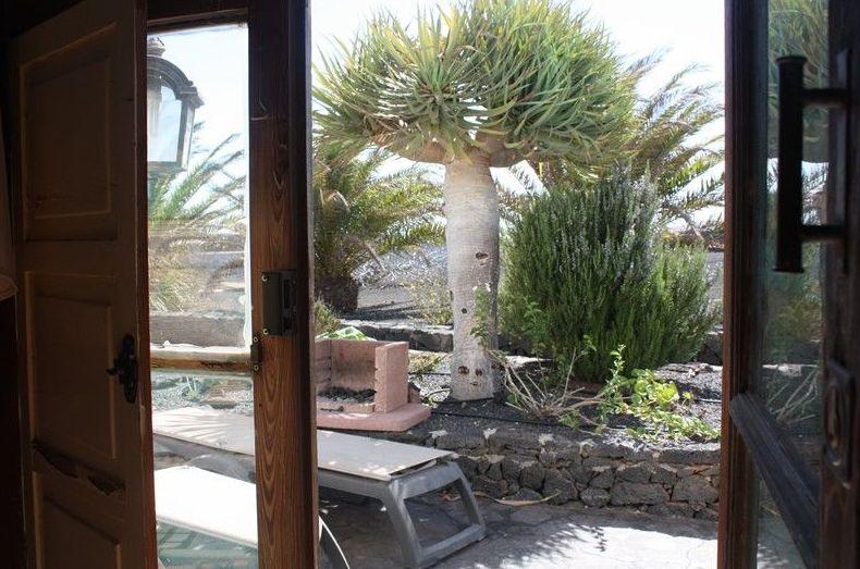 Fotos del estudio Mozaga, patio exterior