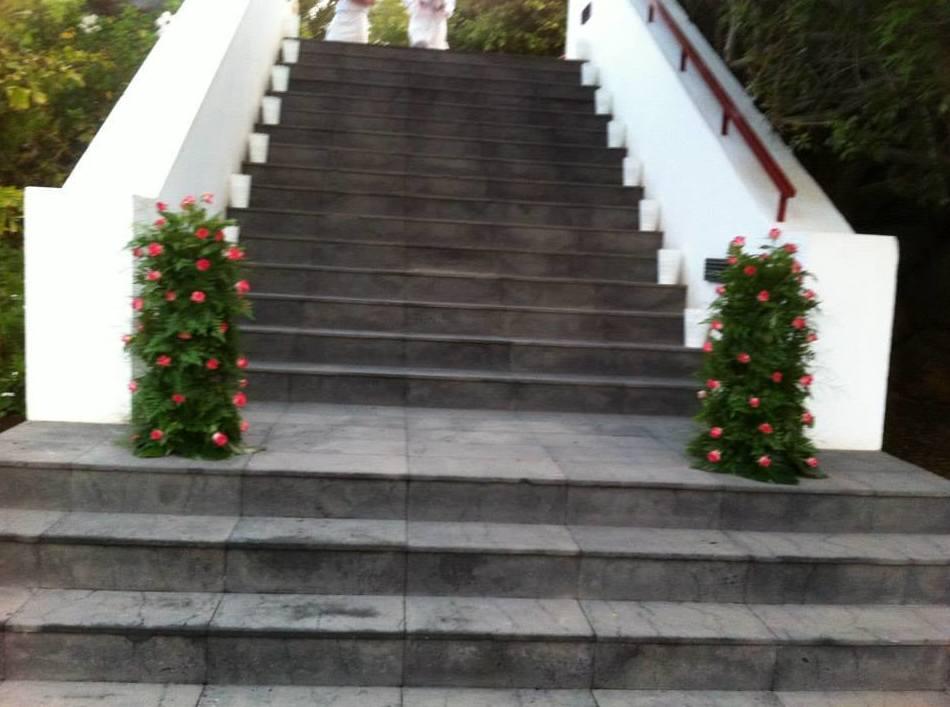 Arreglos florales para hoteles, escaparates…: Servicios  de Floristería Tías