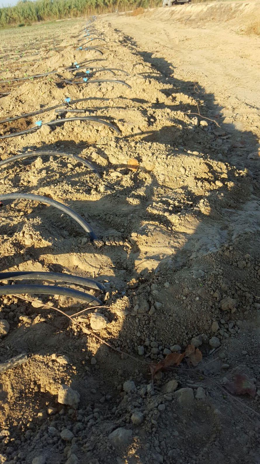 reparación de válvulas de paso en Campredo