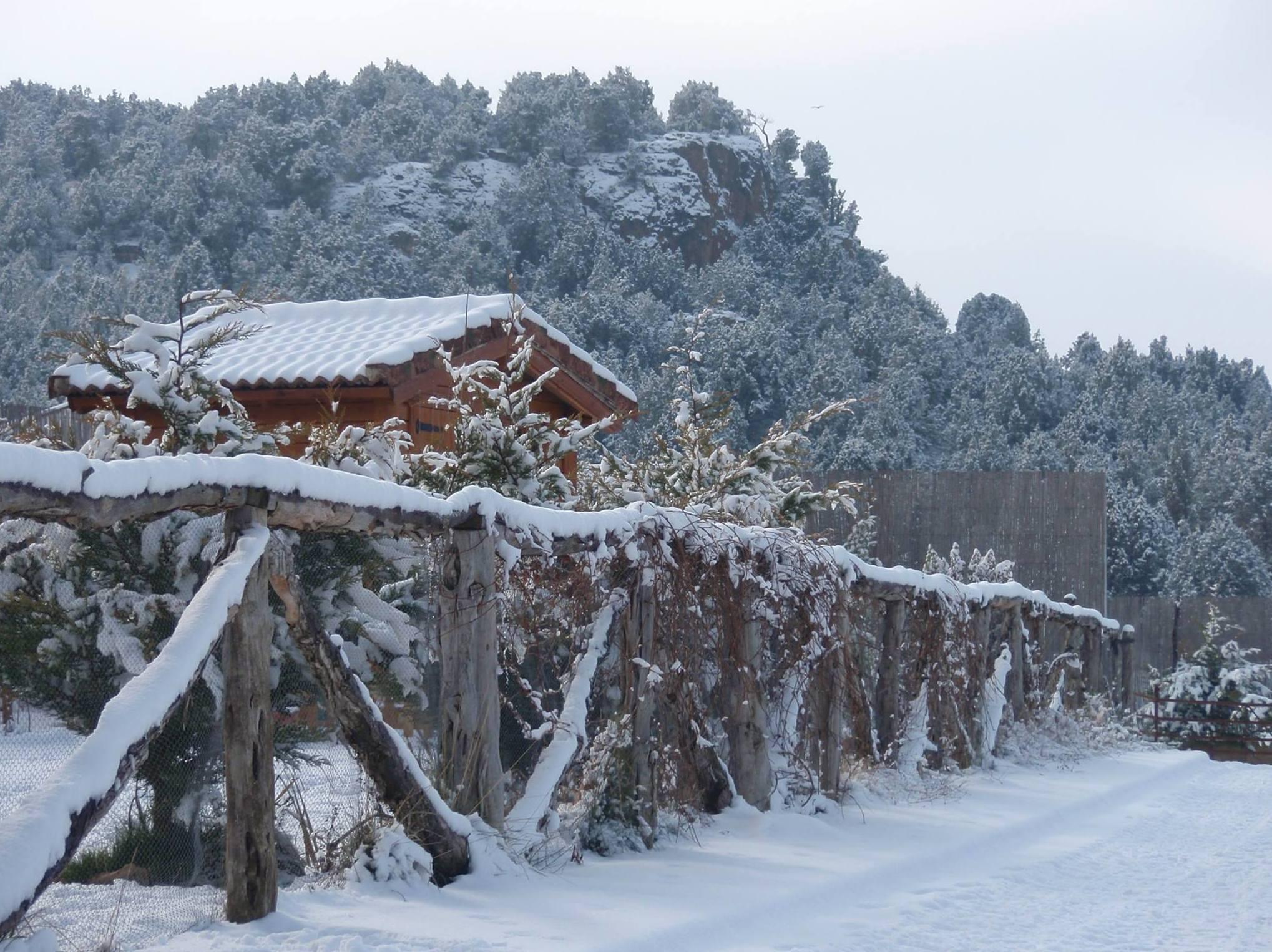 Cabañas y apartamentos turísticos en Segovia
